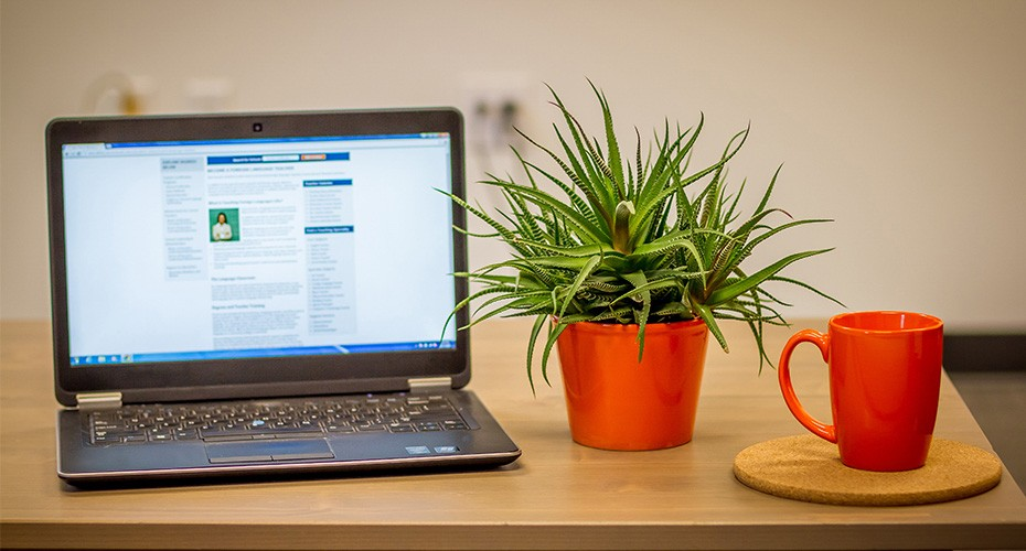 computer on desk with plants set to online degree program