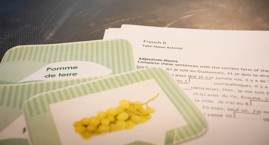 language teaching cards